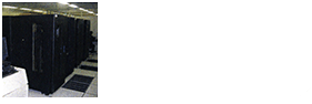 Duplicated host computer systems